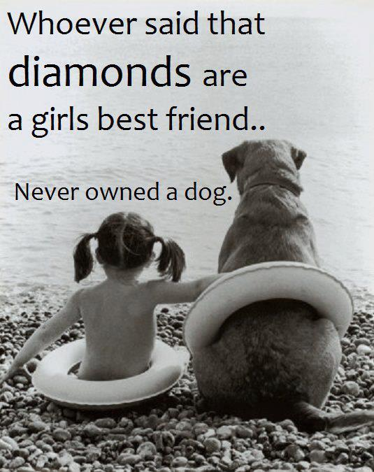 Dogs quote #3