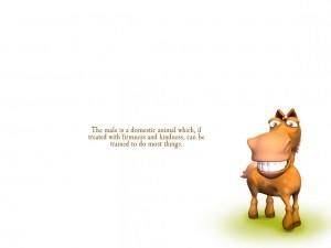 Domestic Life quote #2