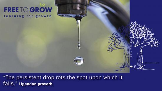 Drip quote #2