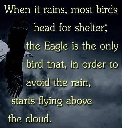 Eagles quote