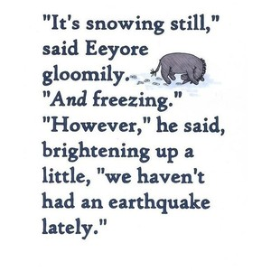 Earthquake quote #3