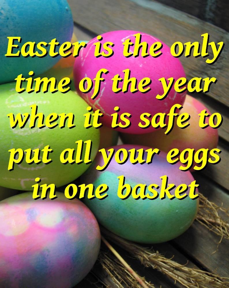 Eggs quote #3