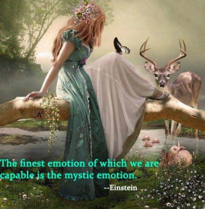 Emotional Life quote #2