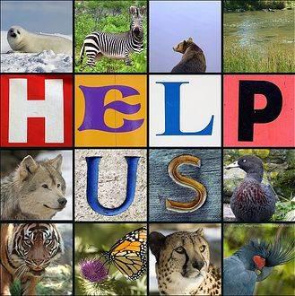 Endangered Species quote #1