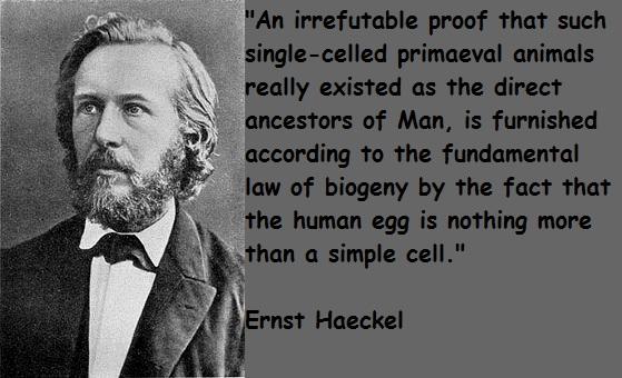 Ernst Haeckel's quote