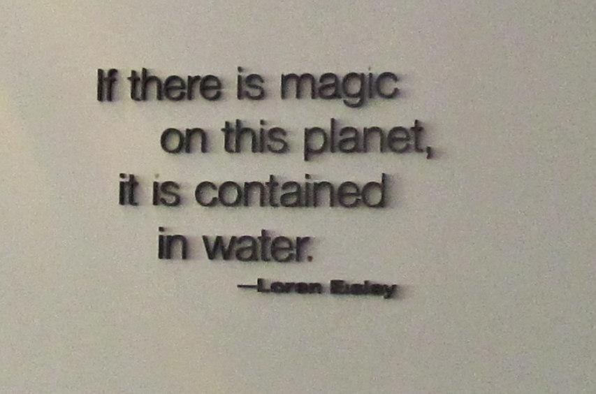 Exhibits quote #1