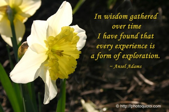Exploration Quotes Sayings Pictures And Images: Famous Quotes About 'Exploration'
