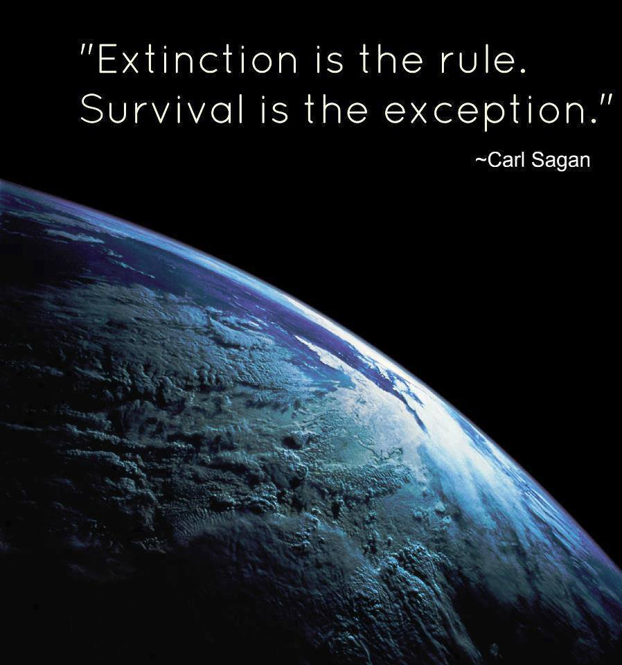 Quotes And Images 2: Famous Quotes About 'Extinction'