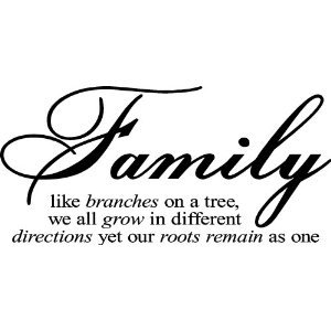 Families quote #6