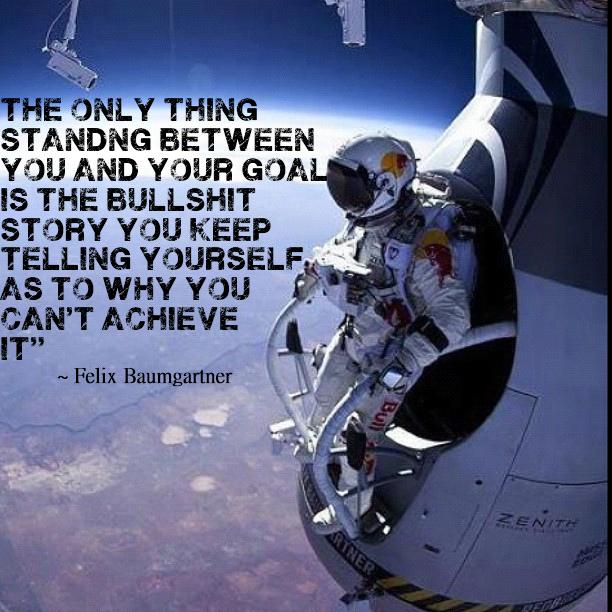 Felix Baumgartner's quote #7