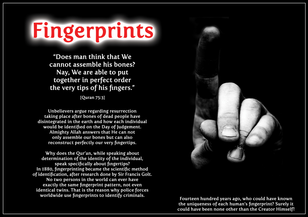 Fingerprints quote #2