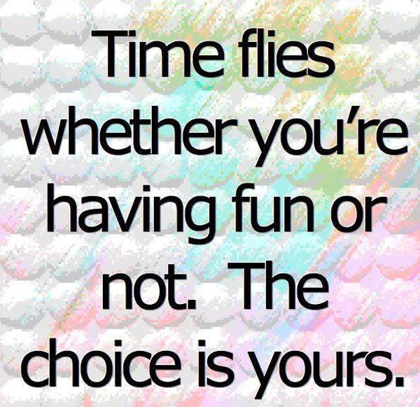 Flies quote #5