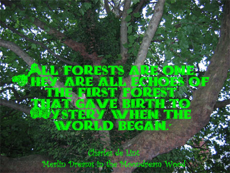 Forests quote #1