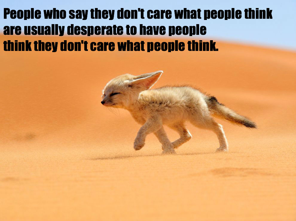 Foxes quote #1