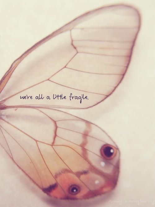 Fragile quote #3