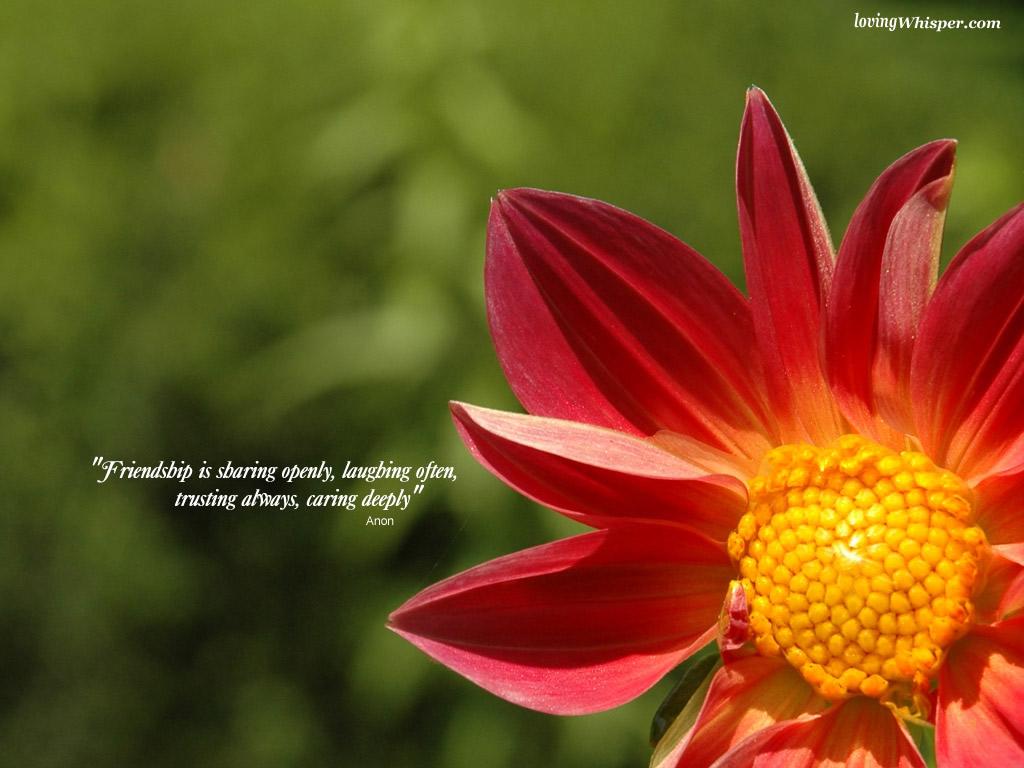 Fragile quote #2