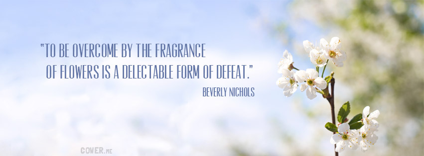 Fragrance quote #3