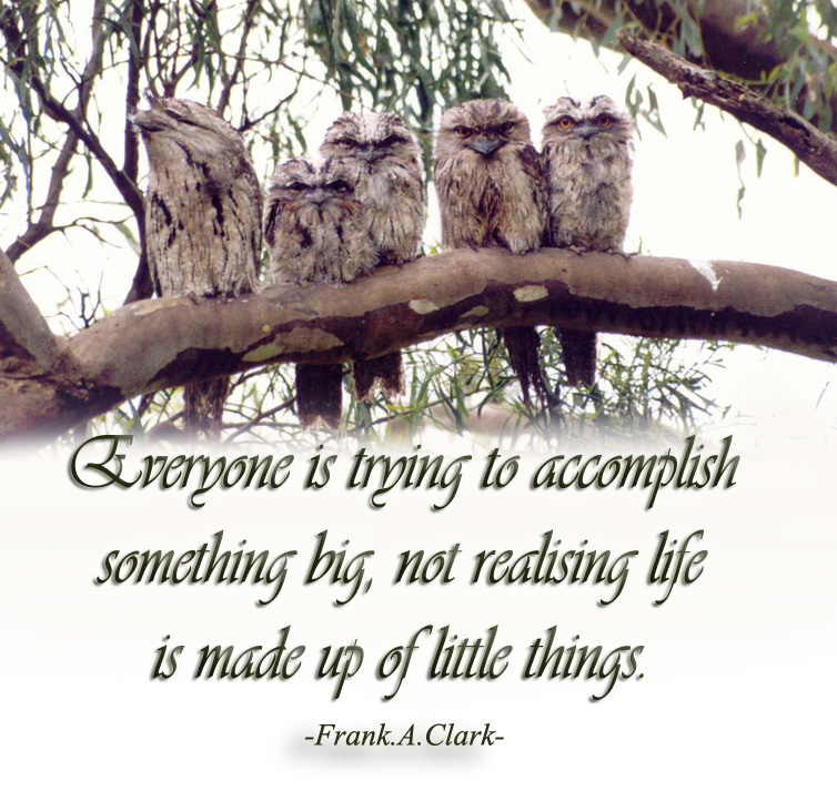 Frank A. Clark's quote #3