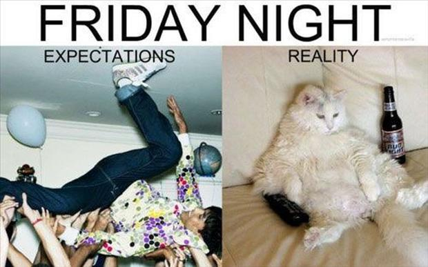 Friday Night quote #1