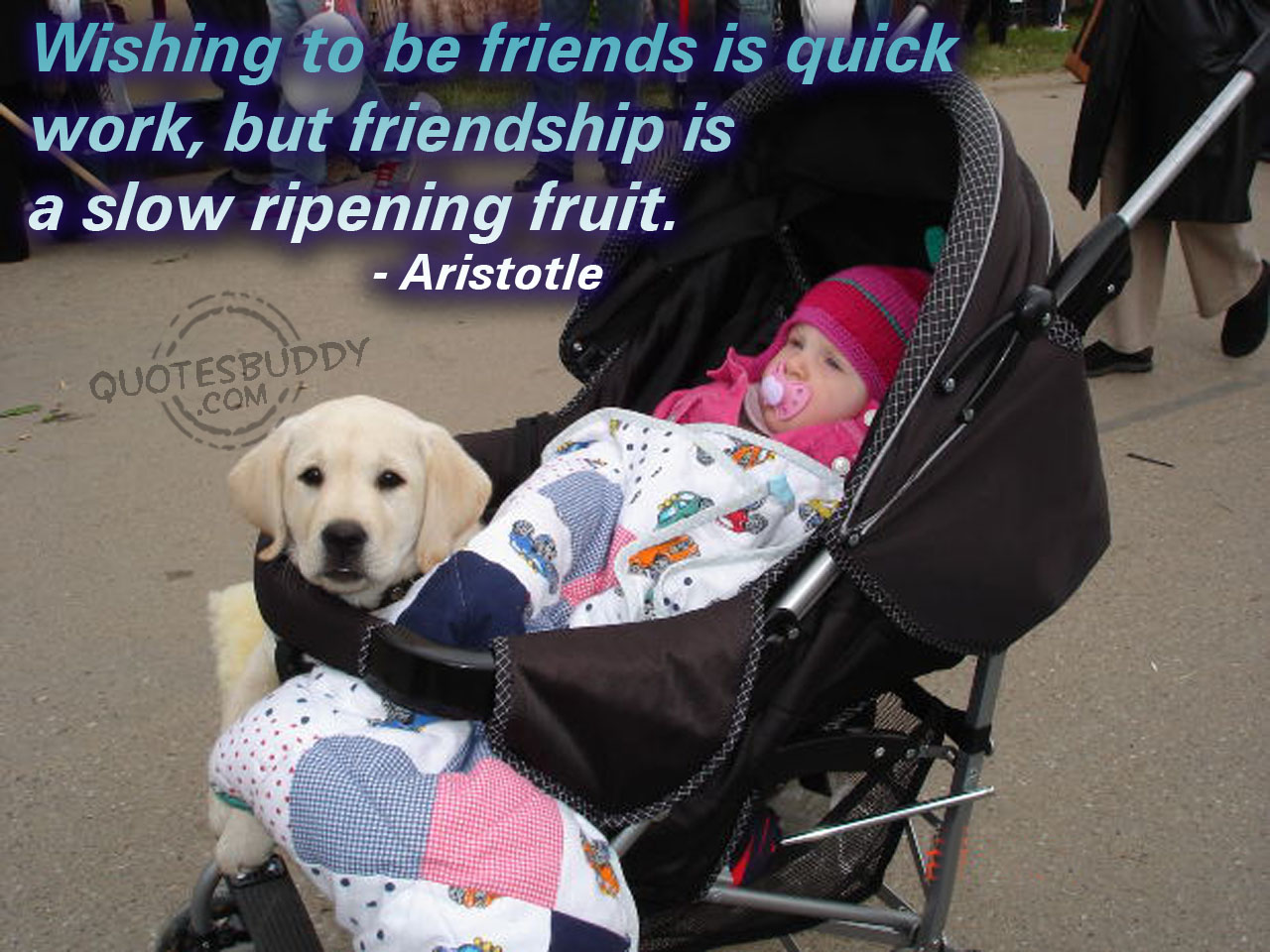 Fruit quote #6