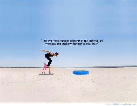 Fun Stuff quote #1