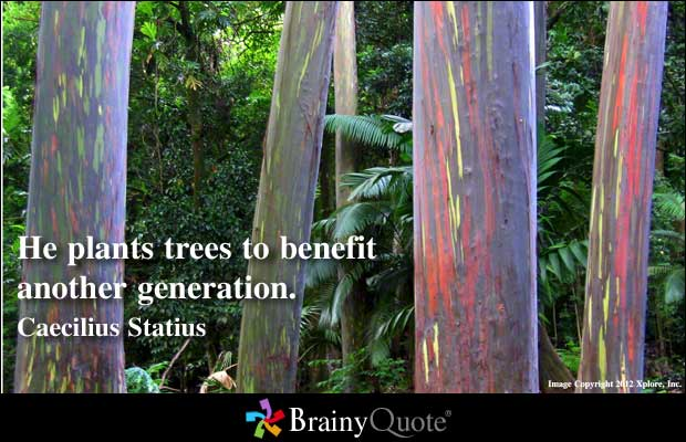Gardener quote #1