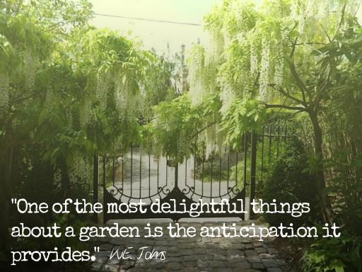 Gardening quote #8