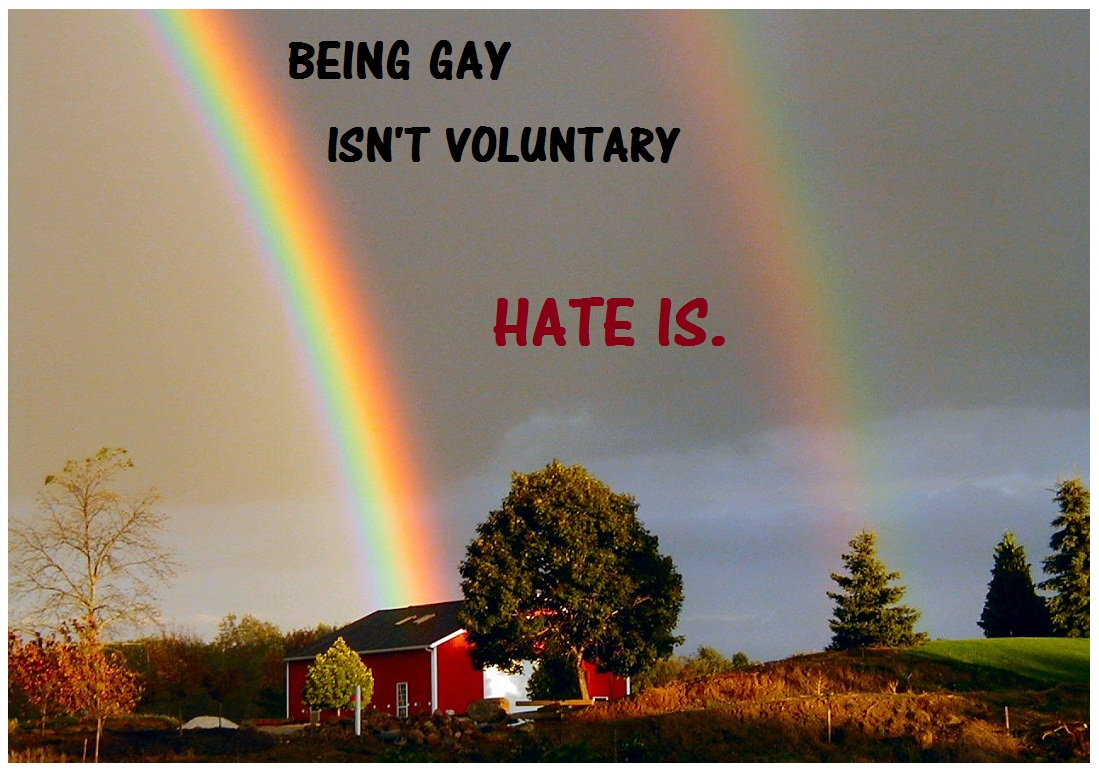Gays quote #3