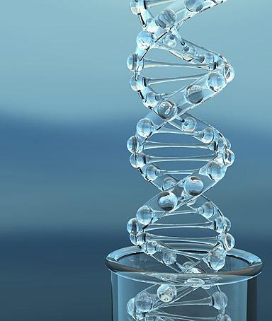 Genetic quote #3
