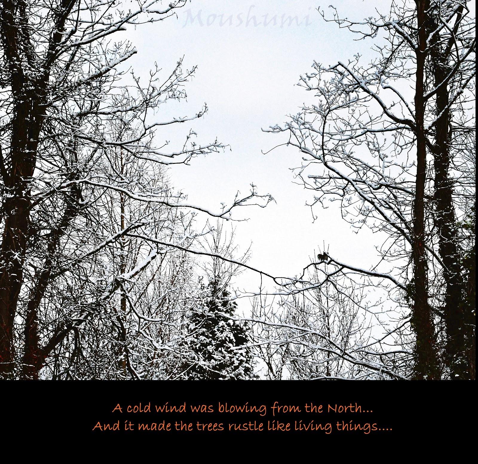 George R. R. Martin's quote #4