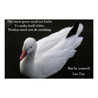 Goose quote #1