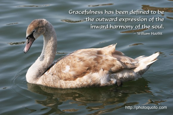 Graceful quote #1