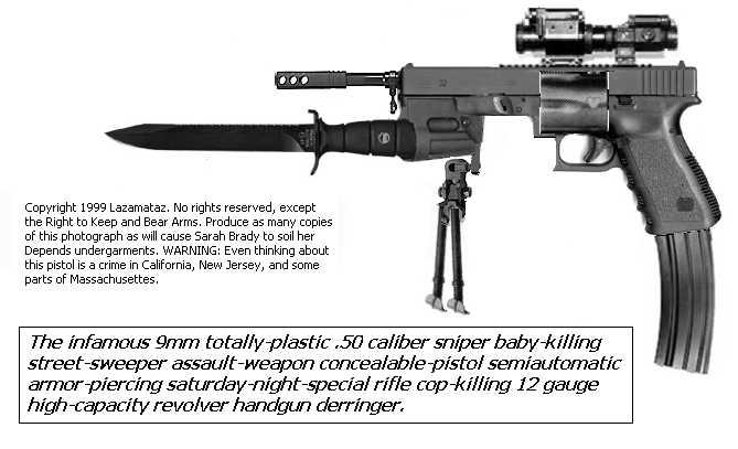 Gun quote #5