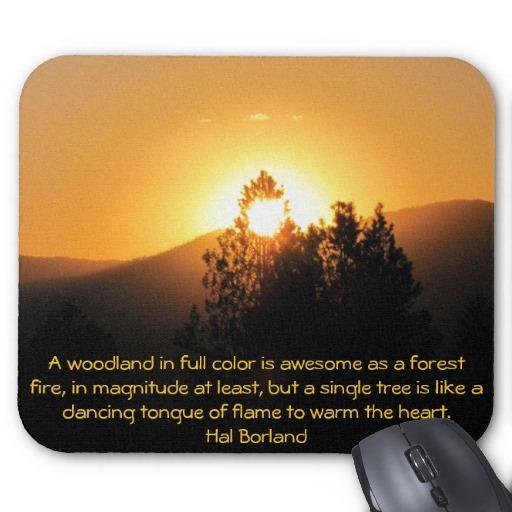 Hal Borland's quote