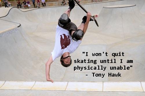 Hawk quote #1