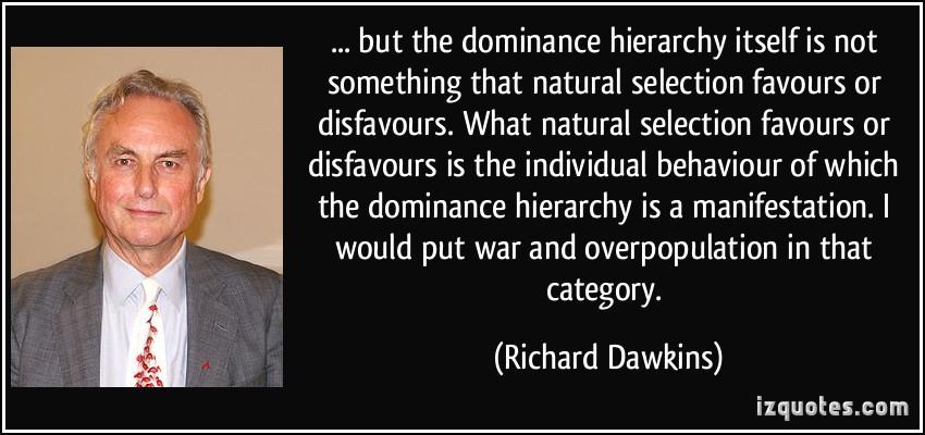Hierarchy quote #1