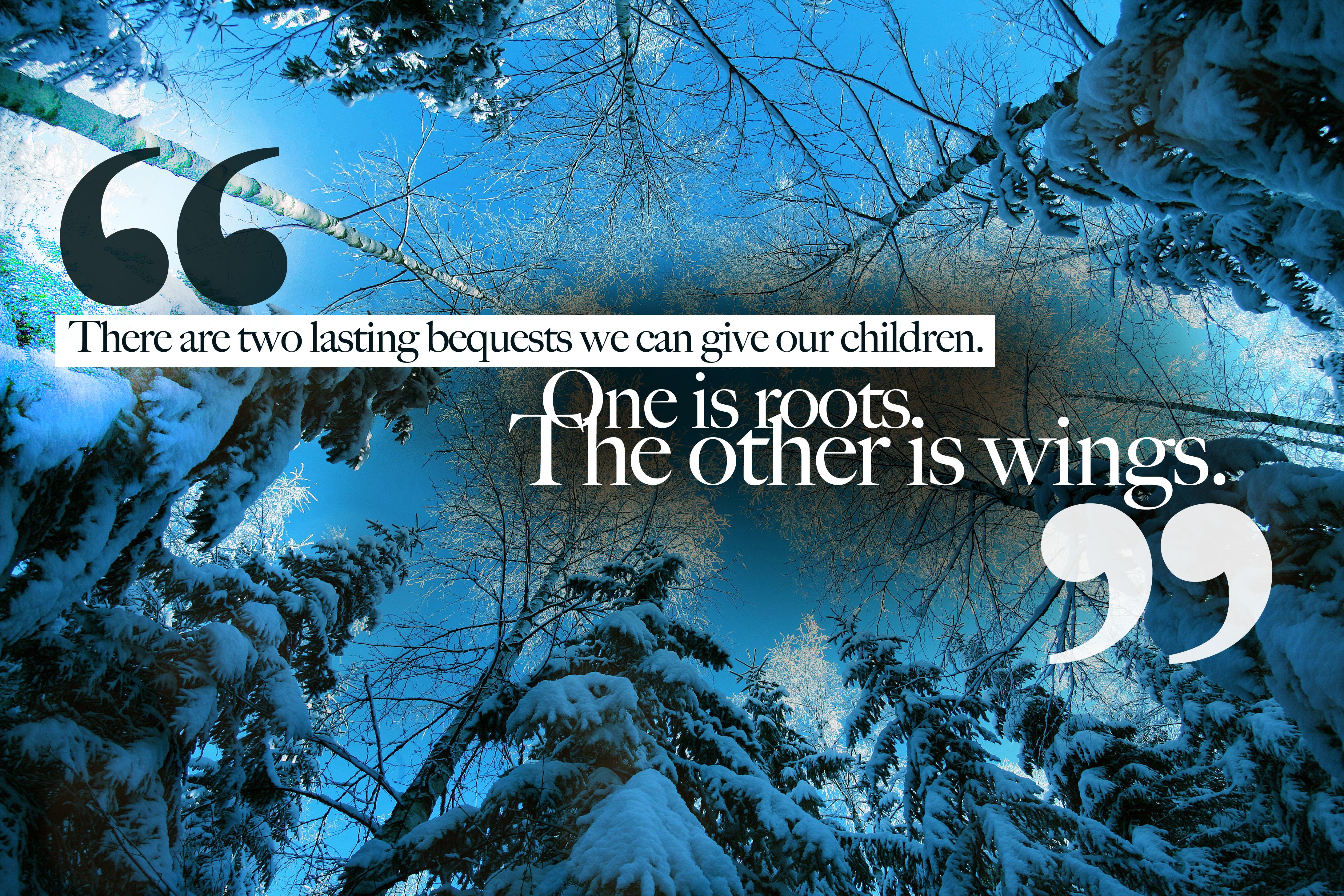 Hodding Carter's quote #1