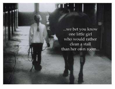 Horses quote #4
