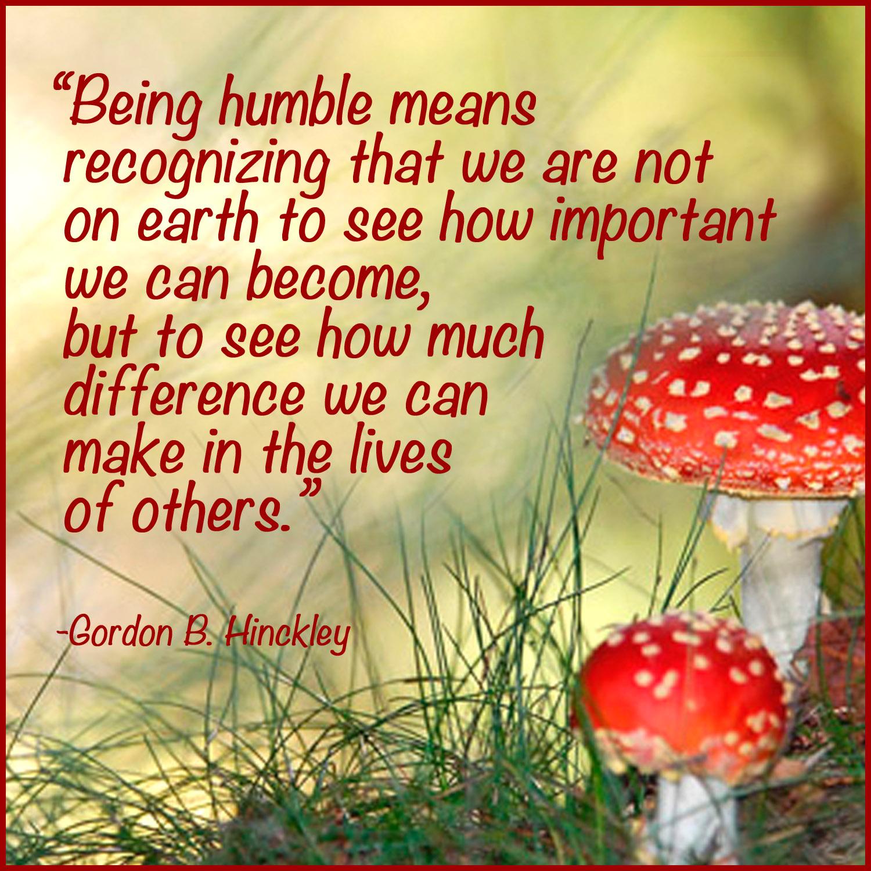 Humble quote #3
