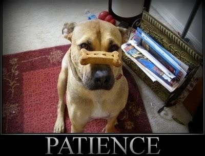 Impatience quote #2