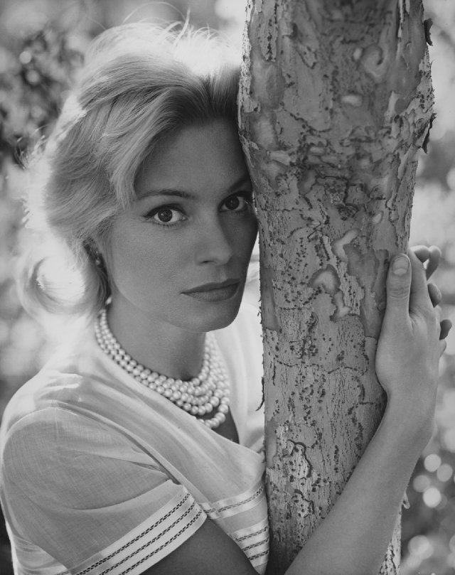 Ingrid Thulin's quote #1