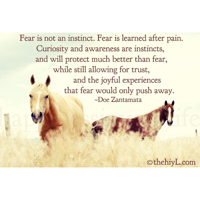 Instinct quote #3