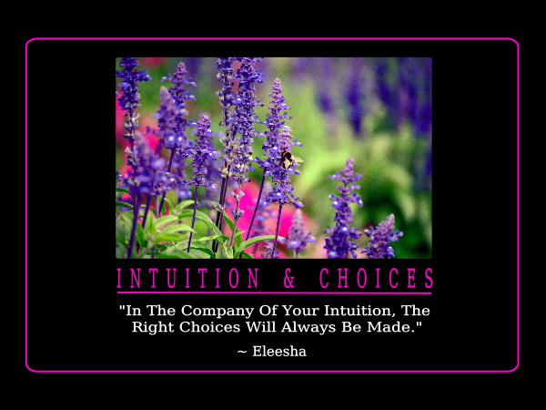 Intuition quote #8