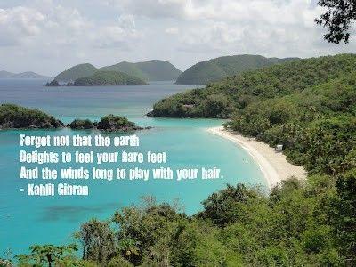 Island quote #4