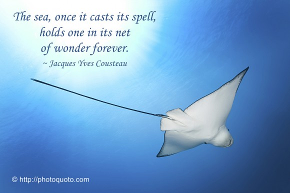 Jacques Yves Cousteau's quote #2