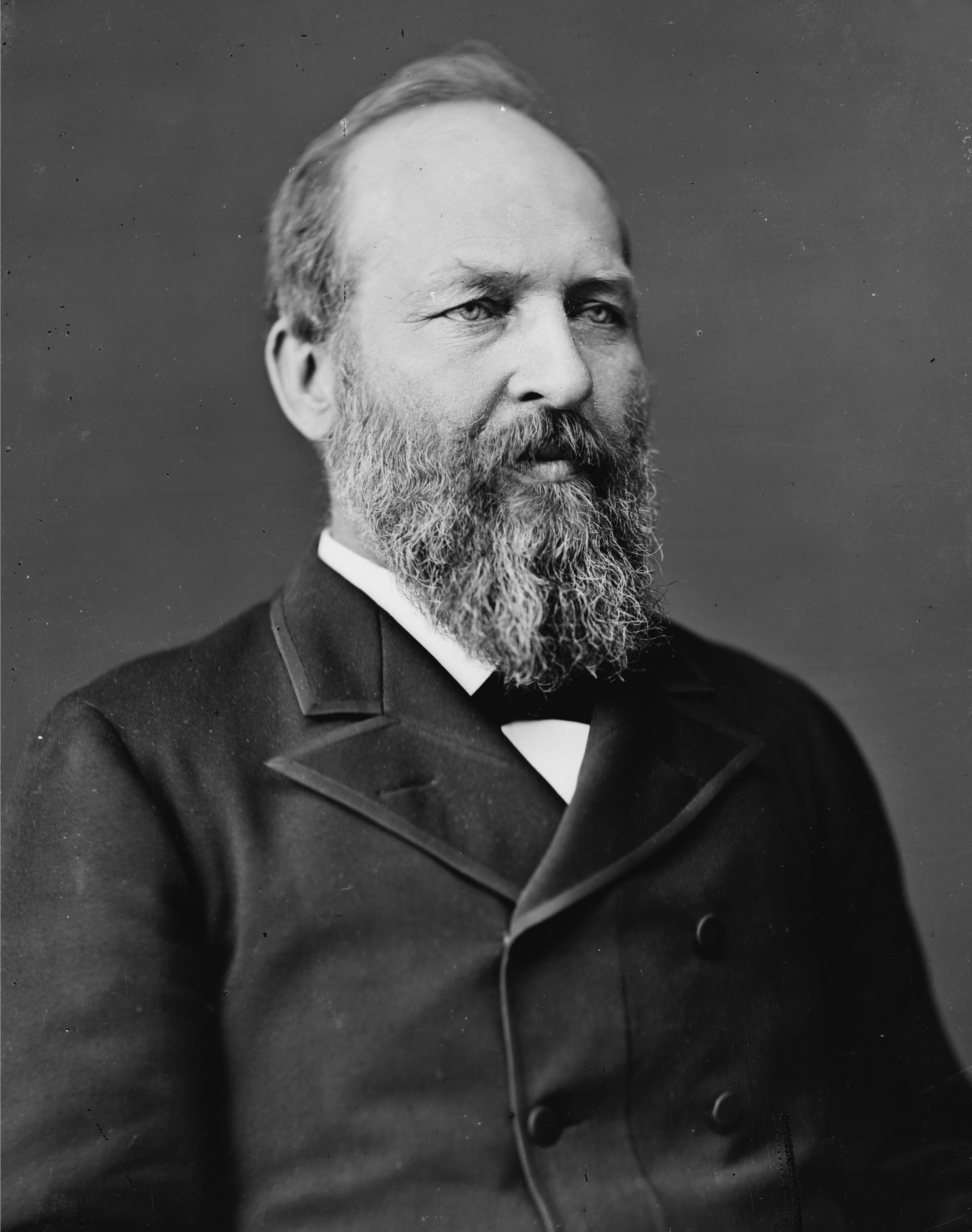 James A. Garfield's quote #1