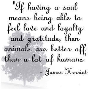 James Herriot's quote #1