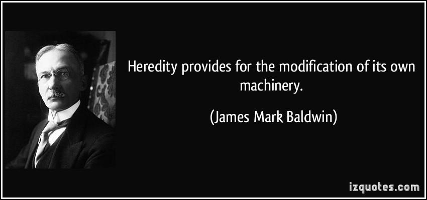 James Mark Baldwin's quote #4