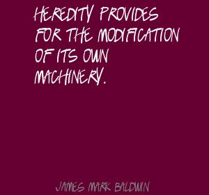 James Mark Baldwin's quote #6