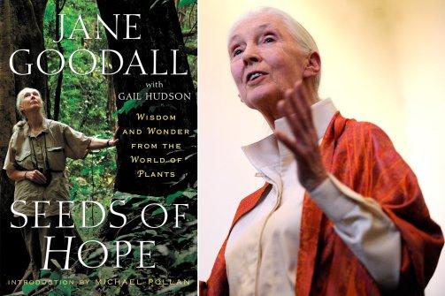 Jane Goodall's quote #7